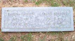Sharee Burrows