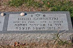 David Gornetzki