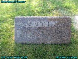Ruth V Moll
