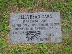 Jellybean Oaks