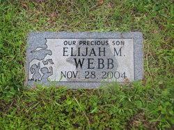 Elijah M Webb