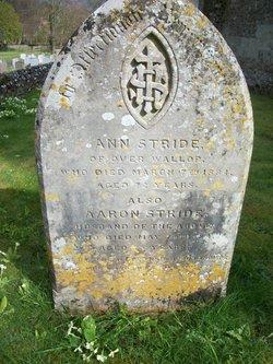 Ann Stride