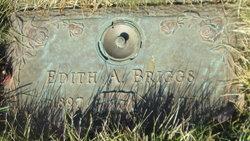 Edith Agatha <I>Schuler</I> Briggs