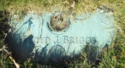 Floyd Joseph Briggs
