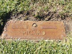 Martin E Picard