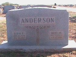 Effie <I>Ferguson</I> Anderson