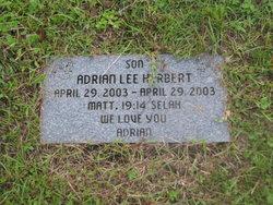 Adrian Lee Herbert