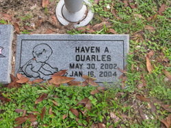 Haven A Quarles