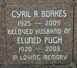 Eluned <I>Pugh</I> Boakes