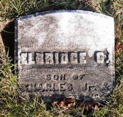 Elbridge G Stevens