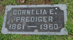 Cornelia E Prediger