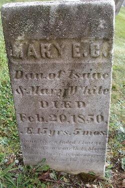 Mary E.C. White