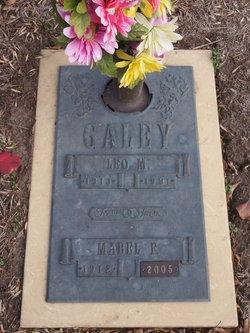 Leo M Galey, Sr