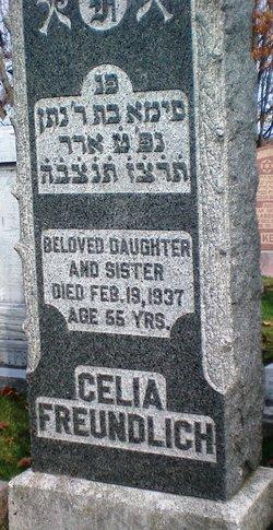 Celia Freundlich