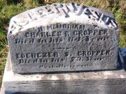 Ebenezer S. Cropper