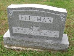 Jacob E. Feltman