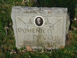 Domenico DiFulvio