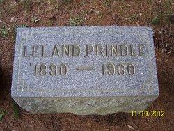 Leland David Prindle