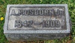 Arthur P Osborn, Jr