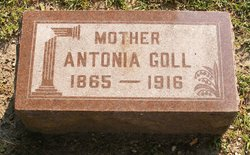 Antonia Goll