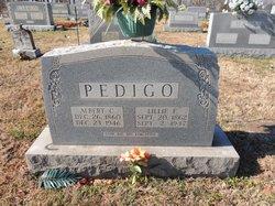 Albert Crittenden Pedigo