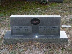 Sandra A. Hayes