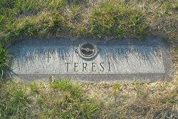 Jerry M Teresi