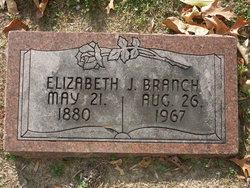 Elizabeth J Branch