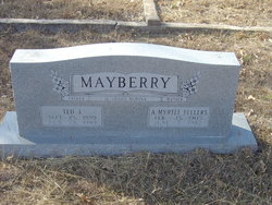 Ted James Mayberry