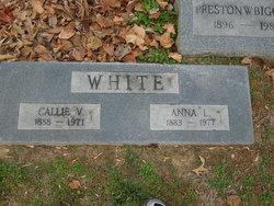 Callie V White