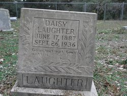 Daisy Laughter