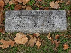 Lavina Jane Harris