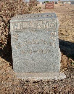 Elizabeth M Williams