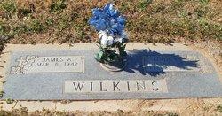 Linda C Wilkins