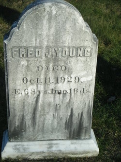 Fred J Young
