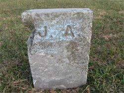 John T Alexander