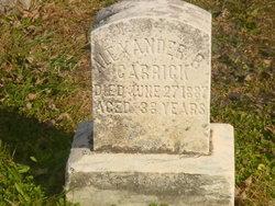 Alexander B Garrick