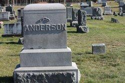 William Ayrton Anderson
