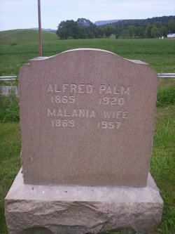 Alfred William Palm