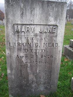 Mary Jane <I>Noyes</I> Mead