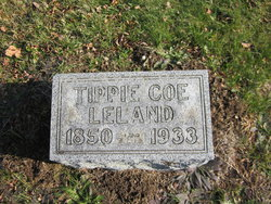 Tippie <I>Coe</I> Leland