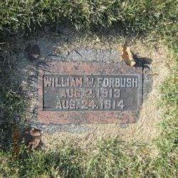 William Forbush