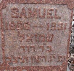 Samuel Seltzer
