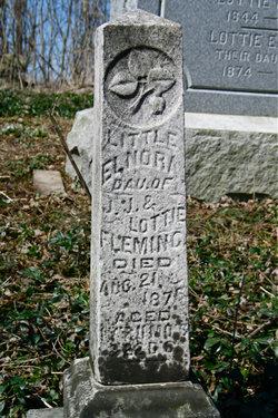 Lottie Elnora Fleming