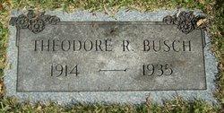 Theodore R Busch