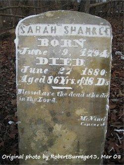 Sarah Ann <I>Ivey</I> Shankle