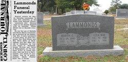 Martin C Lammonds