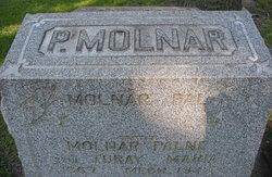 Palne Molnar