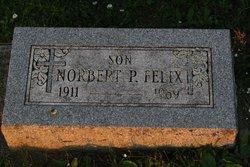 Norbert P Felix