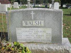 James E Walsh